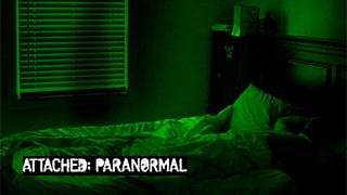 Attached Paranormal bingtorrent