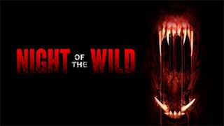 Night of the Wild Bing Torrent Cover