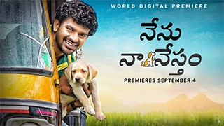 Nenu Na Nestham Bing Torrent Cover