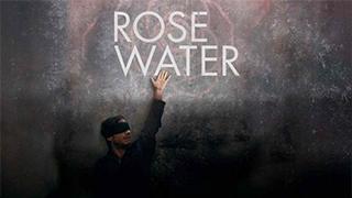 Rosewater bingtorrent