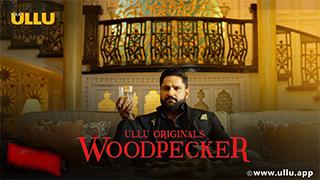 Woodpecker S01
