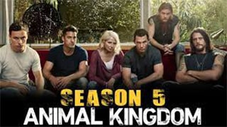 Animal Kingdom US S05E07 bingtorrent