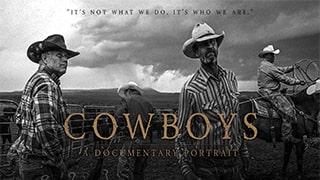 Cowboys bingtorrent