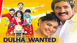 Dulha Wanted (Naanna Nenu Naa Boyfriends)