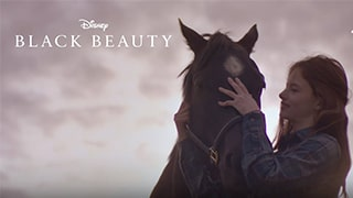 Black Beauty Torrent Kickass or Watch Online