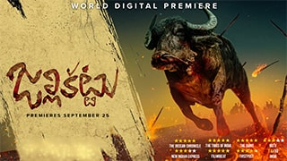 Jallikattu YIFY Torrent
