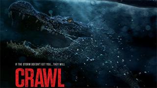 Crawl bingtorrent