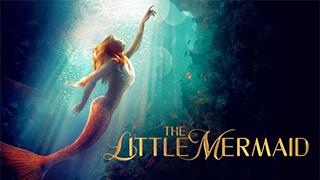 The Little Mermaid bingtorrent