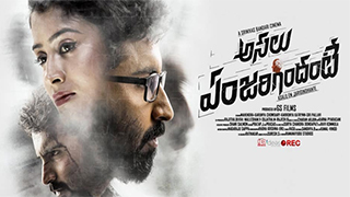 Asalu Em Jarigindhante Yts Movie Torrent