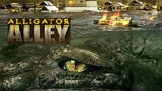 Alligator Alley bingtorrent